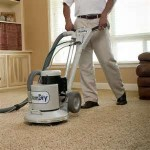 The PowerHead agitates carpet gently and removes dirt and stains.